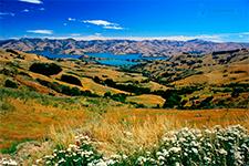 Кентербери Новая Зеландия