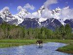 Национальный парк Гранд-Титон